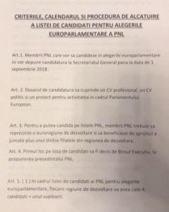 pnl-alegeri-parlamentare-1