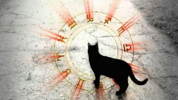 Horoscopul Iubirii 1 AUGUST 2019 - O zodie își întâlnește ...  |Horoscop 13 August 2020