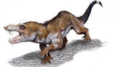 pseudotherium-argentinus-asemanare-cu-scrat-ricardo-martinez-des